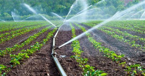 АЗПБ: Настояваме за облекчаване на законодателството за напояване