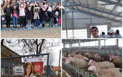 На гости в биологичната овцеферма – добрите практики в животновъдството